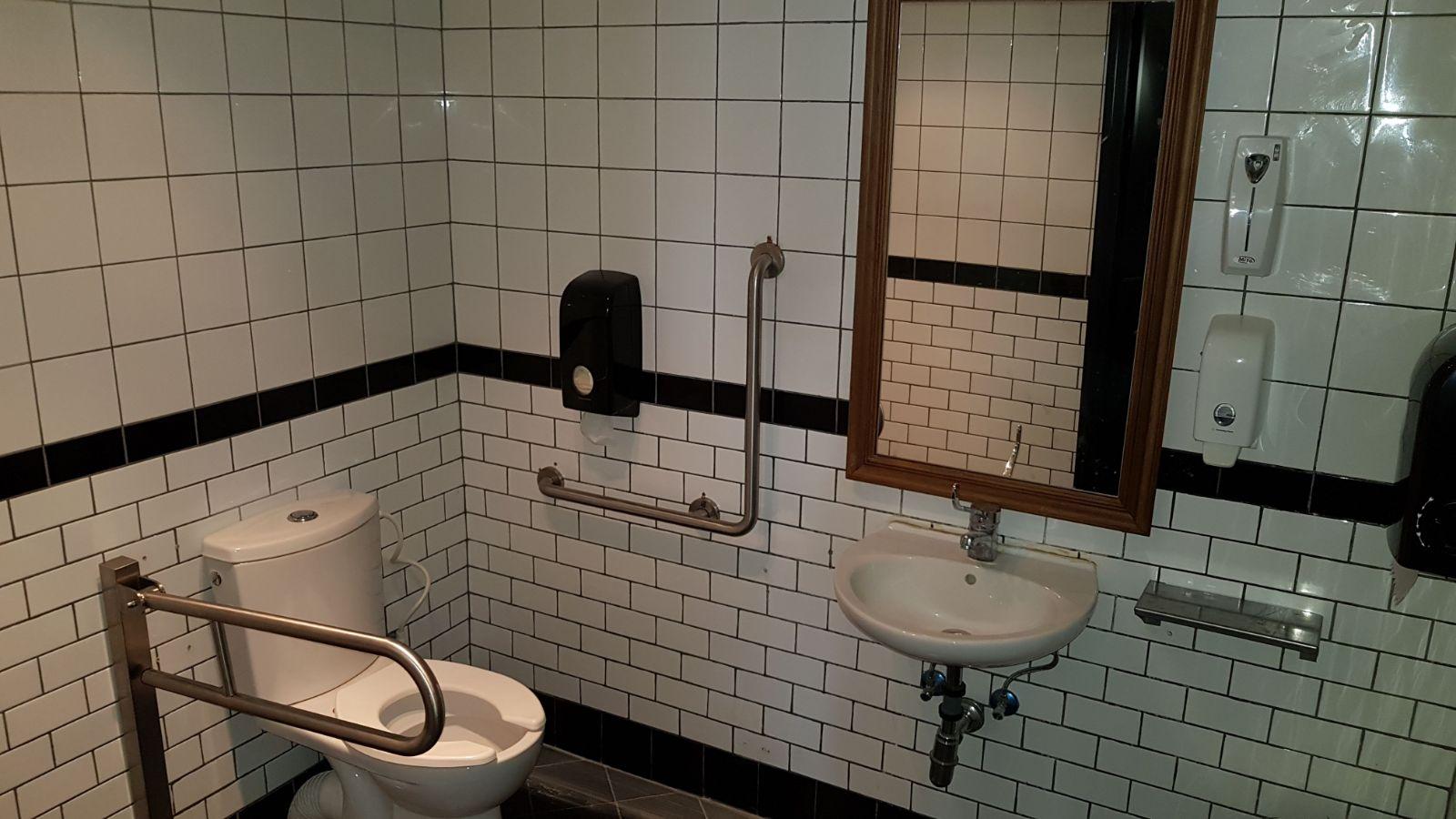 מוצרים לשירותים נגישים